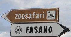 Sono in 240 i verificati pronti per le prove della 60ª Coppa Selva di Fasano